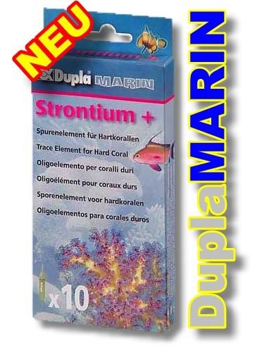 Strontium +, 10 Ampullen Spurenelement für Hartkorallen.