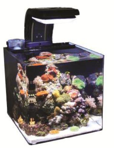 tmc microhabitat 30 nano meerwasseraquarium 30 l komplett. Black Bedroom Furniture Sets. Home Design Ideas