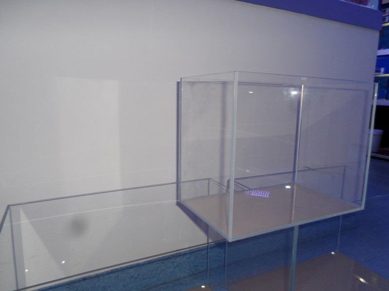 wei glas aquarium 60 cm x 30 cm x 36 cm s wasser aquarien aquarien wei glas. Black Bedroom Furniture Sets. Home Design Ideas