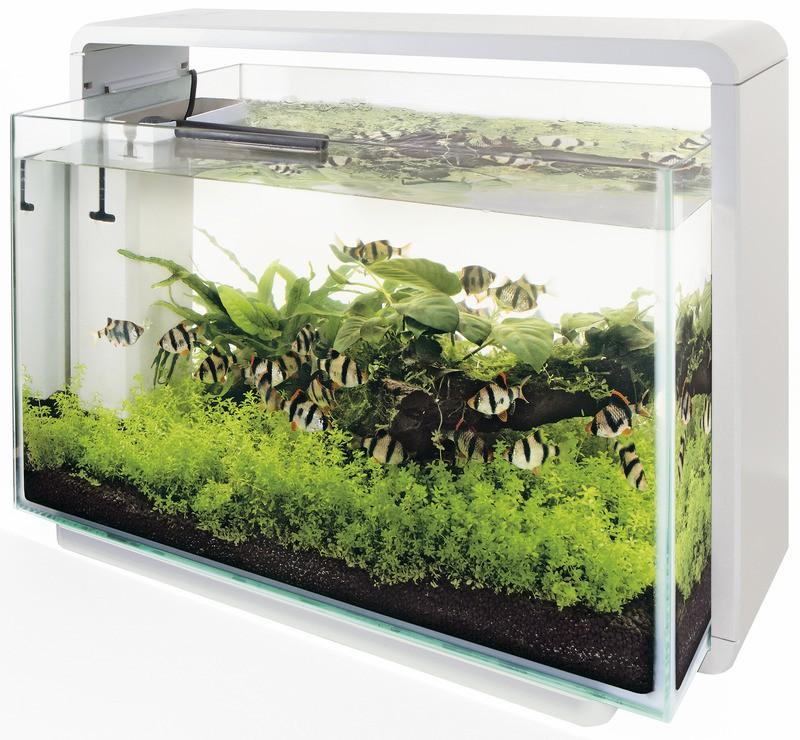 superfish home 60 in wei s wasser aquarien sets 41 bis 65 l. Black Bedroom Furniture Sets. Home Design Ideas